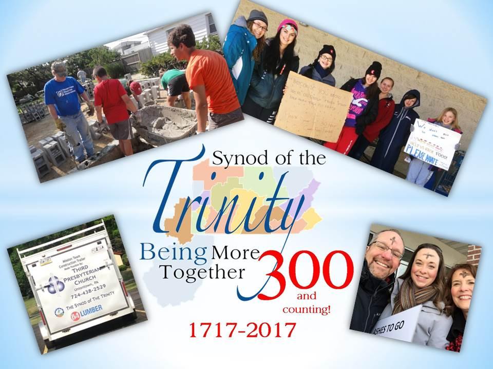 Synod Brochure