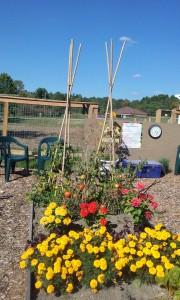 GE gardener list