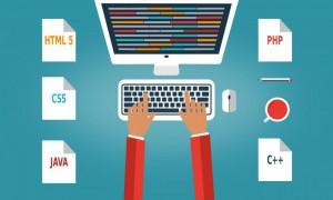 programmer-at-the-desk